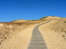 Image-Lithuania_Juodkrante_sand_dunes